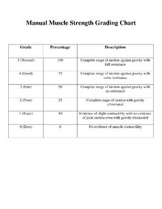 Manual muscle strength grading scale