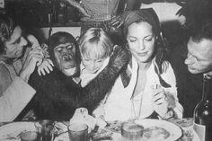 Romy Schneider, Alain Delon, Diana Ross, Motown, Paris, Love Story, Sissi, Supreme, 1970s
