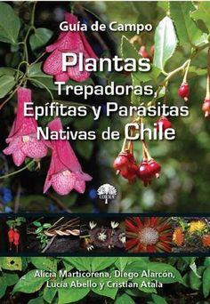 Plantas Trepadoras, Epífitas y Parásitas Nativas de Chile