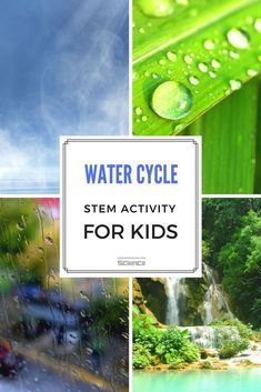 What Is Water Cycle For Kids #experimentsforkids #STEM