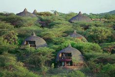 Located next to Tanzania's famous Western Corridor and Grumeti River, #Serengeti Serena #Safari #Lodge was designed to blend in completely with its surroundings. Rooms are placed in traditional rondavels, cooled by surrounding acacia trees and watered by sparkling streams. Each room has a private balcony, spacious bedroom, and natural stone bathroom.    Travel here with us © Serena Hotels  http://www.planetwildlife.com/travel/itineraries/ultimate-tanzanian-safari-serengeti-beyond