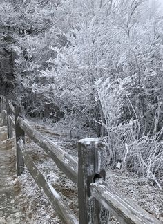 New Found Gap dresses up for winter in the Great Smoky Mountains National Park.