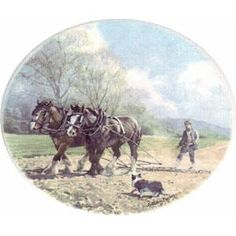 Working Horses Ploughing
