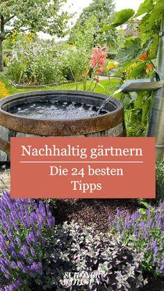 Jardín sostenible - Cultivar un jardín o plantas es algo muy bueno en sí mismo. Indoor Garden, Garden Art, Outdoor Gardens, Diy Garden, Garden Plants, Hydrangea Care, Real Plants, Plantation, Back Gardens
