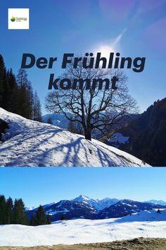 Traumhafte Landschaft, bezaubernde Natur & tolle Rundwege erwarten Sie in Goldegg am See. Ski Trips, Hiking Trails, Summer Vacations, Family Vacations, Explore, Hiking