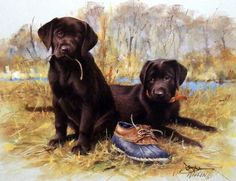 Another great hunting dog puppy print for sale--THAT'S MY PUPPY-CHOCOLATE LAB. The chocolate lab is the rarest of the breed colors. Until recently the chocolate labs were raised primarily for show dog
