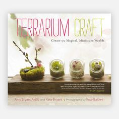 Terrarium Craft - I highly recommend this book for anyone who wants to create their own terrarium.