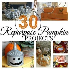 Did you know almost anything can be made into a pumpkin? Try these 30 repurposed pumpkin ideas and your home will be festive in no time. Faux Pumpkins, Velvet Pumpkins, Painted Pumpkins, Pumpkin Crafts, Fall Crafts, Pumpkin Ideas, Diy Crafts, Cheap Halloween, Fall Halloween