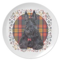 Scottish Terrier on Tartan Plates