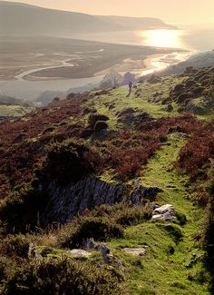 Precipice Walk, Barmouth. Wales, UK by Howard Somerville #photography #travel #leisure #trips #holiday #vacation #places #views #scenery #socialmedia #training