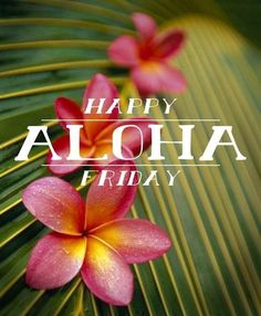 Weekend Quotes : happy aloha friday - Quotes Sayings