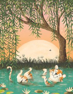 Rachael Saunders #illustration