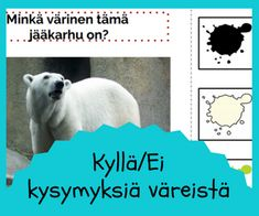 Matikka muodot varit Pre School, Teddy Bear, Teaching, Toddlers, Young Children, Little Boys, Teddy Bears, Education, Infants