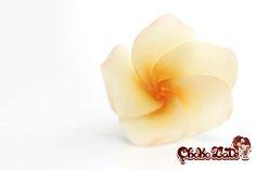 Gumpaste Frangipani Flower Tutorial Tutorial on Cake Central