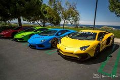 Lamborghini in four colours