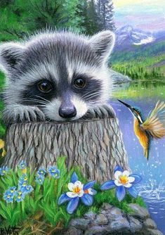 A SPRING HELLO - Little Rafaella has met a new friend along the shore of the mountain lake. Wildlife Paintings, Wildlife Art, Animal Paintings, Art Paintings, Painting Art, Raccoon Drawing, Raccoon Art, Racoon, Cute Animal Drawings