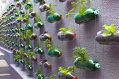 wow...looks great and  Awesome Use for Plastic Bottles... (Verve Evolving: August 2012)