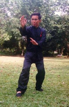"""Sifu Wong demonstrating an asymmetrical Zhan Zhuang position known as the """"Three- Treasure Stance"""","""