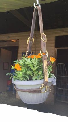 I love this idea for pretty horse memorials-- a way to remember horses whose halters we will always keep around. I have a few of those with the name plates. Horses that touched our hearts! I'd think it best to hang them under an overhang to keep the leather in shape-- but what a fun memorial idea. Much prettier than allowing those halters you'll always keep hang and get cobwebs! Thanks, Angie C. for sharing this pic. - Julie Goodnight Horsemanship