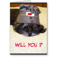 Will You be My Valentine Greeting Cards - $3.30 - #stanrail -How can you say no to a sad face like this! Keep in touch with Zazzle custom greeting cards. Customize all parts of this folded card – inside and out, front and back – for free! #ValentineCards    #dogs #cairnterrier  #PhotoCards   #stanrails_store