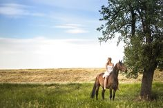 Portraitfotos mit Pferd mit Lovisa Simona und Solero in Weinheim Horse Photography, Photoshop Photography, Amazing Photography, Girl Photo Shoots, Girl Photos, Horse Love, Dark Horse, Horse Drawings, Girls Summer Outfits