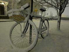 Frozen wheels. A new treat.
