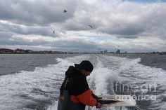 Filleting At The End Of The Day - photograph by John Telfer fineartamerica.com