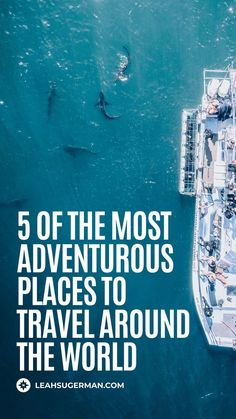 Travel is always an adventure but specifically going on adventurous travels will never disappoint. Here are 5 of the most adventurous places to travel around the world. Shark Diving, Shark S, Travel Around The World, Around The Worlds, Largest Waterfall, Victoria Falls, Adventure Activities, Yoga Teacher Training, Yoga Retreat