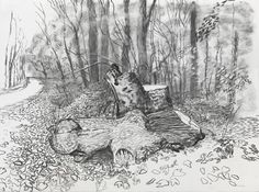 David Hockney on the destruction of his 'totem' tree stump: 'It was an act of spite' - Modern Landscape Sketch, Landscape Drawings, Landscape Art, Landscape Paintings, David Hockney Landscapes, David Hockney Artist, Van Gogh Drawings, Tree Sketches, Sad Art