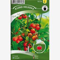 """Lättodlad körsbärstomat för odling i kruka på balkong, fönsterkarm, växthus eller utomhus i mycket skyddat läge. Riklig skörd av små tomater med söt smak. Trivs i näringsrik, väldränerad jord. Vattna regelbundet. Skotten i bladvecken, """"tjuvarna"""", tas ej bort. Ruska lätt på blomklasen, så gynnas f..."""