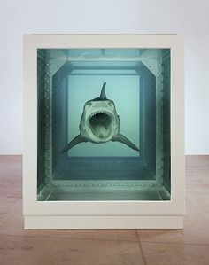 """Damien Hirst at Tate Modern. """"The Physical Impossibility of Death in the Mind of Someone Living"""""""
