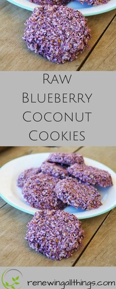 Raw Blueberry Coconut Cookies