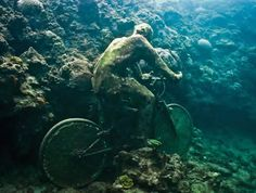 Jason deCaires Taylor. The Fall from Grace  Depth 6m. Grenada, West Indies.