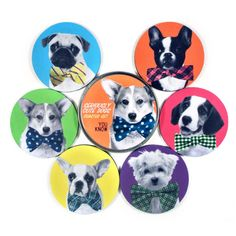 Common Rebels: Seriously Cute Dogs Coaster Set