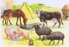 Сочинение сказки «На скотном дворе». Лексическая тема Домашние животные (5-6 лет)