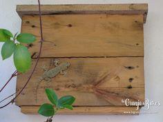 Caja nido para salamanquesas de www.lagranjadebitxos.com  vídeo: https://youtu.be/zQHZ2n1hrxo