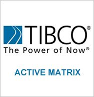 Tibco Activematrix is the tibco SOA platform used to develop SOA based applications and governance or deploy a enterprise SOA by 10+ years experienced trainers.