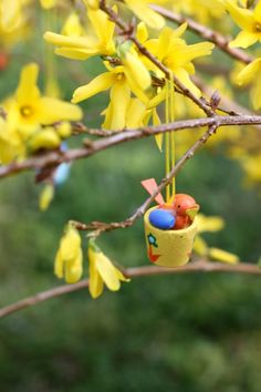 Easter Tree: cut a few branches of forsythia, secure them in a vase with pebbles and water, and hang little ornaments among the blossoms.... <3 reminds me of my childhood