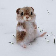 Хомяк Жорка. Милый грызун, но снег не очень уважает❄❄❄ Мечтает о жарких странах☀. Хома при домике. Sold. #хома #хомяк #хомячок #hamster #feltingwool #сухоеваляние #сувенирручнойработы #игрушкиизшерсти #авторскиеигрушки