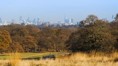 Richmond Park, London | Richmond Park's protected view This gave me the start of my story ...
