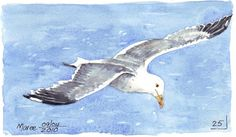 Image result for how to paint seagulls