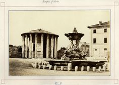 Rome Temple of Vesta Fountain truth Large vintage albumen photo Anthropology, Archaeology, Vintage Photos, Fountain, History, Photographs, Painting, Rome, Italia