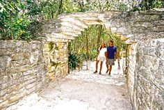 Discovering Cozumel tips