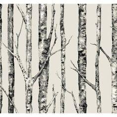 "York Wallcoverings Urban Retreat 27' x 27"" The Birches Wallpaper   AllModern"