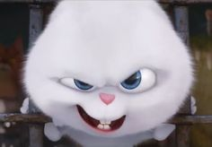 Pets - Snowball Cartoon Memes, Cartoon Art, Snowball Rabbit, Hd Cute Wallpapers, Cute Bunny Cartoon, Rabbit Wallpaper, Cute Piggies, Cute Disney Wallpaper, Cute Icons