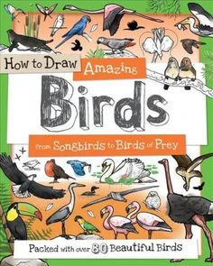How to Draw Amazing Birds: From Songbirds to Birds of Prey