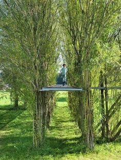 Baubotanik: The Botanically Inspired Design System that Creates Living Buildings,Willow footbridge summer Image © Ferdinand Ludwig Art Et Architecture, System Architecture, Classical Architecture, Ancient Architecture, Sustainable Architecture, Jardin Decor, Timber Buildings, Forest Garden, Design System