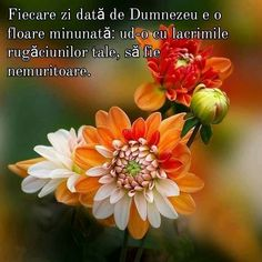 Jesus Loves You, God Loves Me, God Jesus, Faith In God, Love You, Birthday, Te Amo, Birthdays, Je T'aime