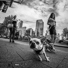Street Photography with Fisheye. Photographer: Willem Jonkers