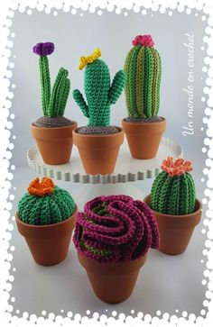My Little Cactus English My Little Cactus English With This Tutorial Crochet Up To 6 Kinds Of Differ Cactus En Crochet, Love Crochet, Crochet Gifts, Crochet Cactus Free Pattern, Crochet Amigurumi, Crochet Toys, Crochet Flower Patterns, Crochet Flowers, Cactus Craft